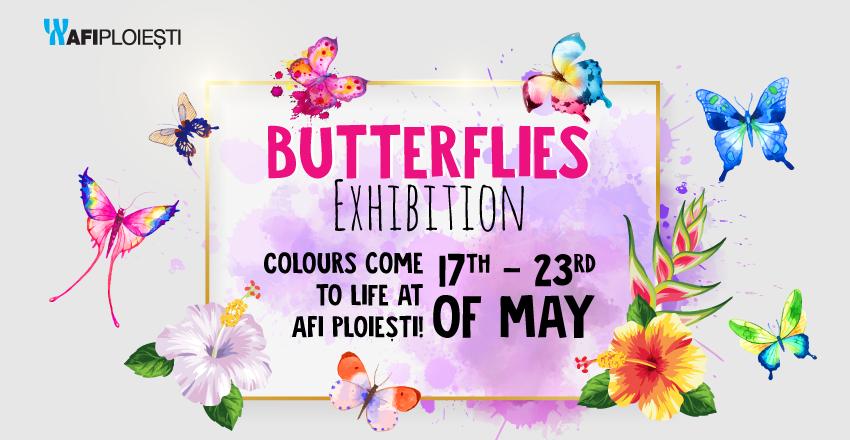 Butterflies Exhibition